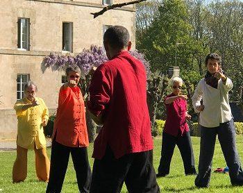 Mouvement du bois dans le Shaolin Ba Shi