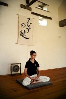 Pratique du Neigong au centre Xian